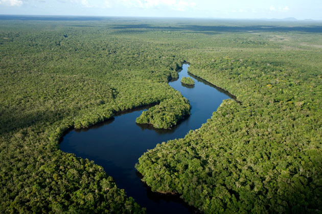 Parque Nacional do Viruá (RR). Foto: ICMBio