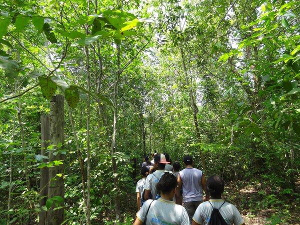 Trilha do Ferrugem, na Zona de Uso Especial do Parque Estadual do Cantão. Foto: Janete Tavares/Governo do Tocantins