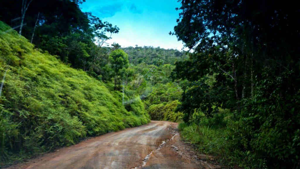 Estrada de terra batida em meio à vegetação no Parque Estadual da Serra do Conduru. Foto: Sema/BA