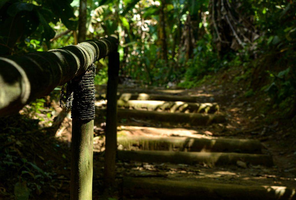 Degraus e corrimão na Estrada Real. Parque Nacional da Serra da Bocaina. Foto: Felipe Alves